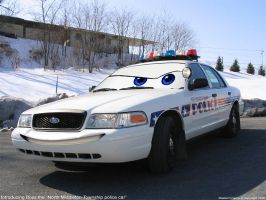 Boss - The police car by masternoname