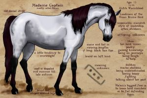 Madame Captain - Reference by life-d-sign