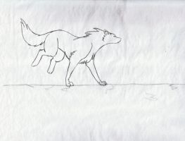 Wolf running by Iguana-in-Darkness