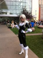 Black Cat by TheDoctorsPartner13
