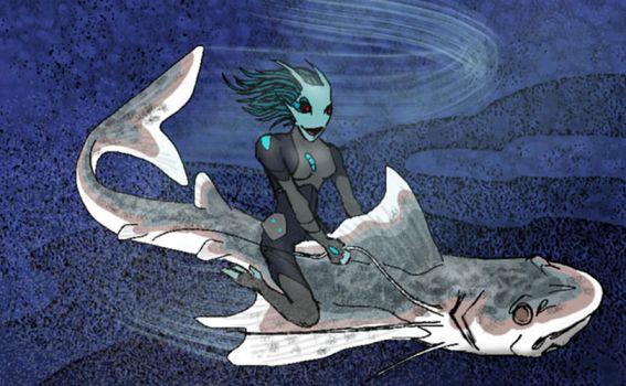 Riding Fish by systemcat