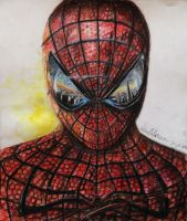 The Amazing Spiderman by MrLeopoldh