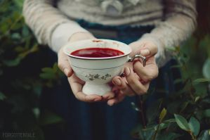 Cup of herbal tea by forgotten-tale