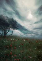 Premade Background 19 by maiarcita
