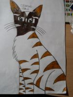 Cat from me , fertig pls- comments by Snowstorm-wolf
