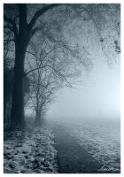 Mist by ivich01