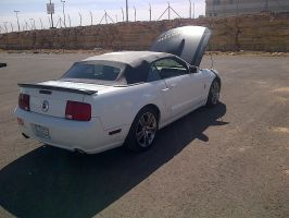 Mustang GT 2 by HZON