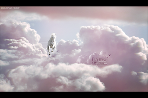 Flying without Wings by Cabelz