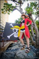 Fem Luffy ALA 2012 by WhenWasThisTaken