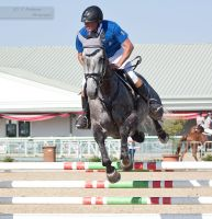 National Dressage and Jumping_95 by CalyHoney