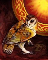 Celtic Owl by felixxkatt