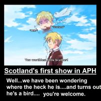 APH - Scotland's first show by peppermix14