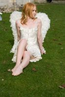 Seraphim Angel 14 by Random-Acts-Stock