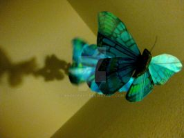 Blue Butterfly shadows... by AngelKast