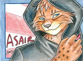 Asair Badge 2004 by cybre