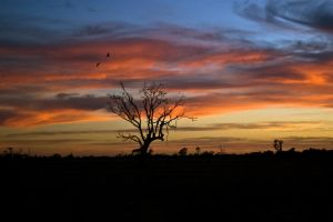 Sunrise in South Australia by chokalattegirl