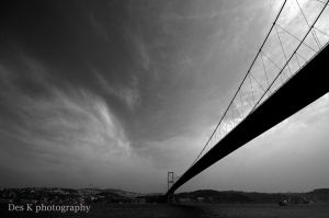 The bridge by 4DK