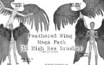 Feathered Wing Mega Pack by advs14u2nv