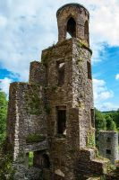 Blarney Castle again by mickeybob00