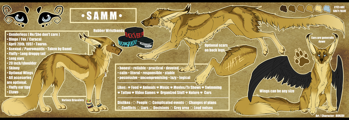 .: Samm - Reference Sheet 2017 :. by B0RZOI