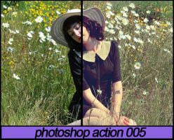 Photoshop Action 005 by ToxicActions