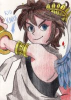 Kid Icarus by Jack-0f-Diam0ndz