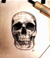 Skull art by Bobby-castaldi-art