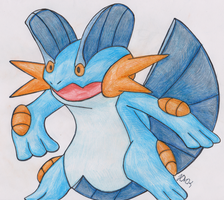 Swampert by Shabou
