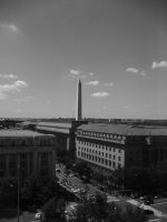 Back in DC by Due-South