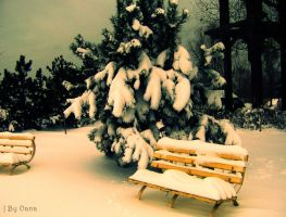 eternal winter by Oanny