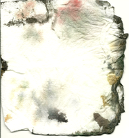 Paper Towel 1 by Doodlee-a