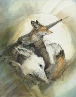 Kawue, Fox and Bird by Zethelius