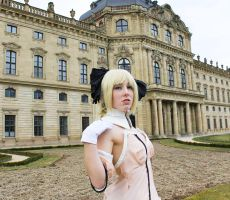 Saber Lily Cosplay - The King and her Castle by KagerouRyuzuu