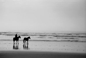 Beach horses by atomjell