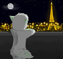 .:View of Paris:. by xSilverSymphony