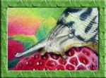 tigerslug ACEO by Schiraki