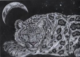 Snow Leopard by Star-Lion
