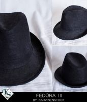 Fedora III (Stock) by KarvinenStock