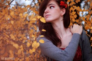 Colors of autumn.8 by jaloszka