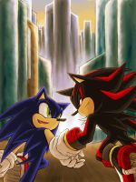 Sonadow-Run together by maruringo