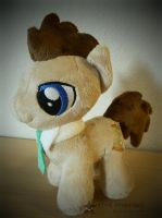 Doctor Whooves by StarMassacre