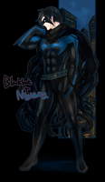 Black bat+Nightwing by Operapink
