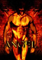 Angel Cover 1 by phoenix-84