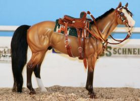 Rich in sidesaddle tack set by tolthorse