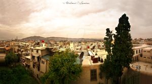 Damascus Panoramic View by ashamandour
