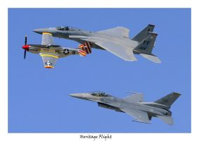 """Heritage Flight"" by OpticaLLightspeed"