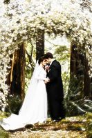 Bella and Edward's wedding by ToriaChernenko