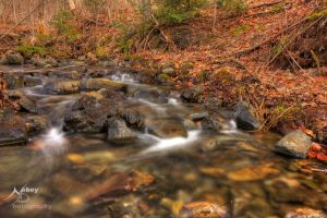 HDR Spring Stream by Nebey