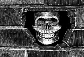 The Skull in the Wall by Frohickey