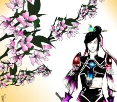 Zhang He-dynasty warriors by eiri-yuki-sama
